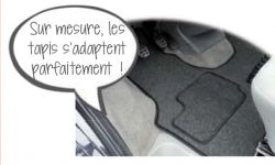 TAPIS DE CABINE LUXE CAMPING CAR TRANSIT DEPUIS 06/2006